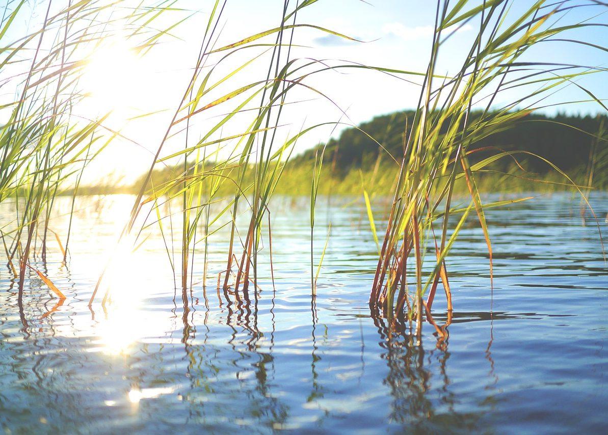Ilmastobisnes.fi-sivustolta Askelmerkkejä Pk-yritysten Ympäristötoimiin